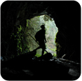 Explore some of the Forests many tunnels- Fun, a little bit scary and not as exerting as caving!!