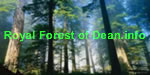 Royal Forest of Dean.Info Logo