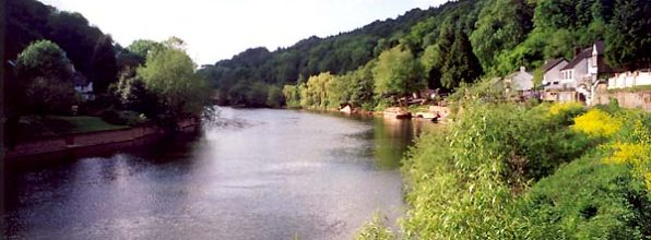 View of Symonds Yat in the Royal Forest of Dean